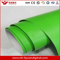 China Manufacturer Car Wrapping Vinyl--Apple Green