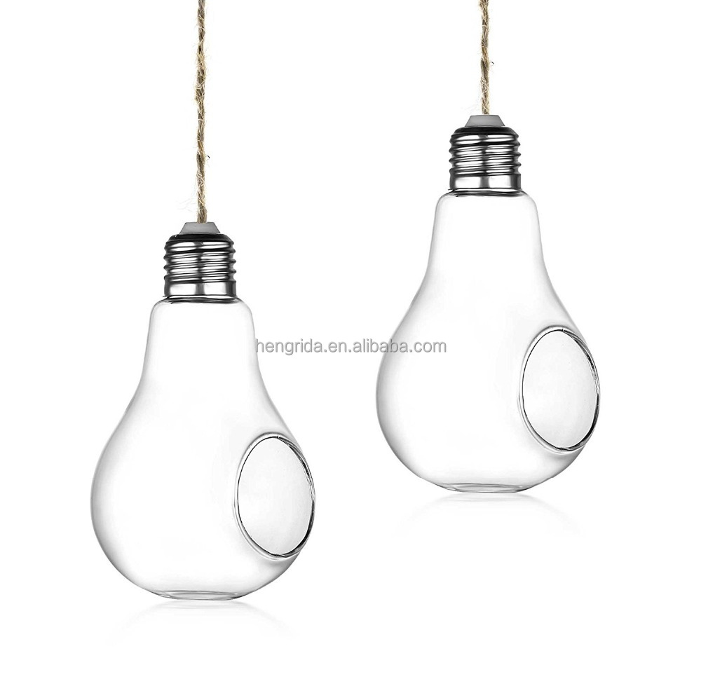 Set of 2 Light Bulb Shape Clear Glass Air Plant Terrarium With Hanging String
