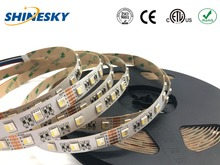IP65 silicone waterproof RGB+WW SMD5050 24V 60leds/M swimming pool led strip lighting