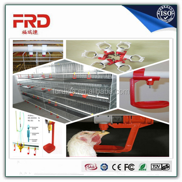 Automatic Chicken Cage Galvanized Layer Broiler Rearing Cage