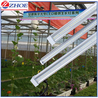 2015 Hot Sales Plant LED Grow Light 28W T8 T5 Tube Type Aluminum Heatsink SMD LED 120 Degree