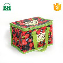 Custom lunch box cooler non woven bag for frozen food