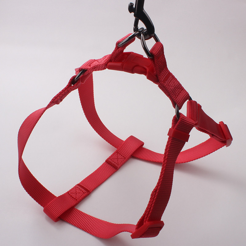 Red background customized nylon webbing dog collar with adjustable buckle