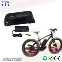 48v dolphin e-bike battery 48v 14ah 13s4p lithium battery pack with 2A charger