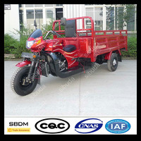 Sibuda Cng Three Wheeler
