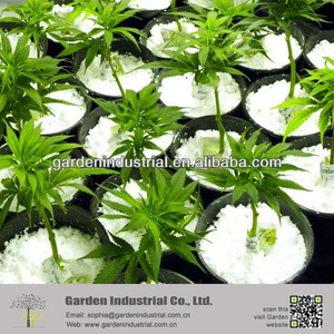 Soil Conditioner Perlite