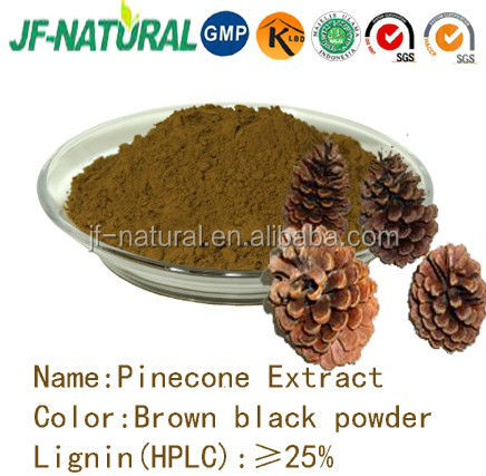 Pinecone extract powder ISO, GMP, HACCP, KOSHER, HALAL certificated.