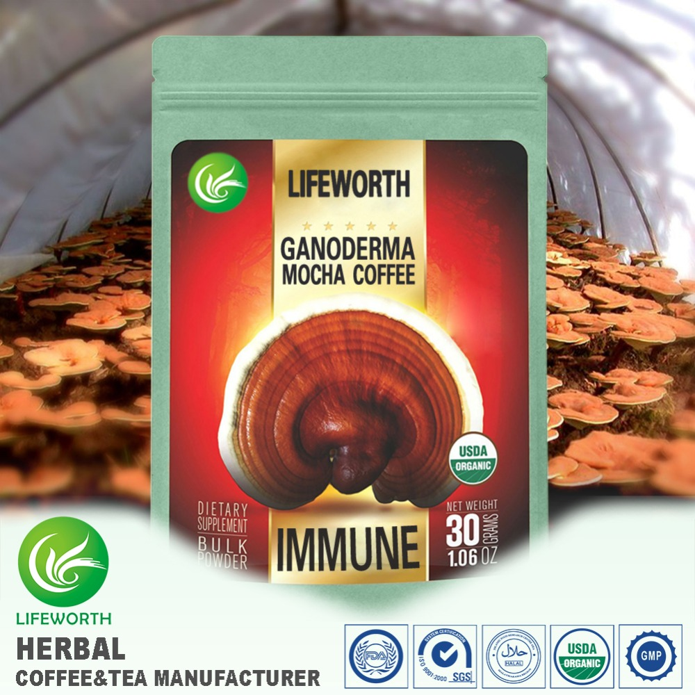 Lifeworth wholesale herbal USA new formula instant mocha coffee with lingzhi extract arabica ground coffe