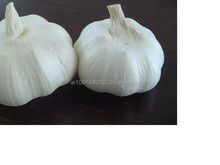 Quality natural White Garlics for sale - Ad us on Sky/pe ( agric.farm )