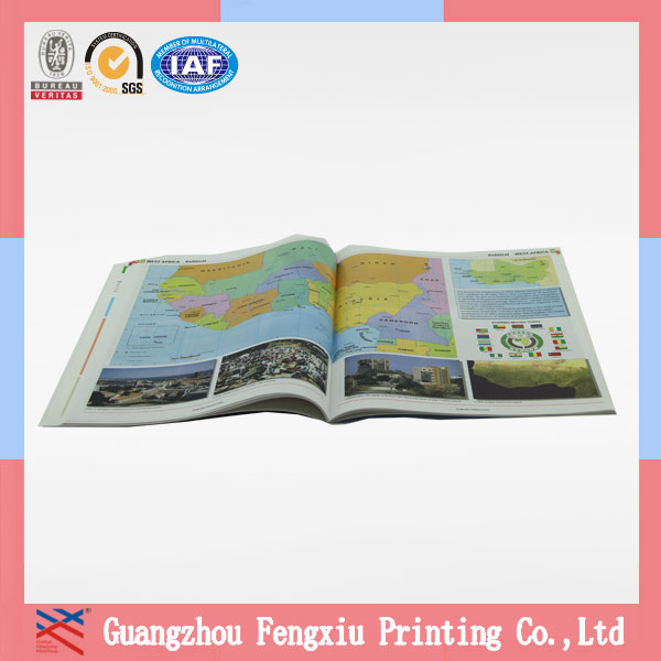 Best Selling Colorful Professional City Folded Guide Map Printing