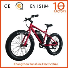 Changzhou Yunshine 26 inch beach electric bicycle, fat tire , seagull
