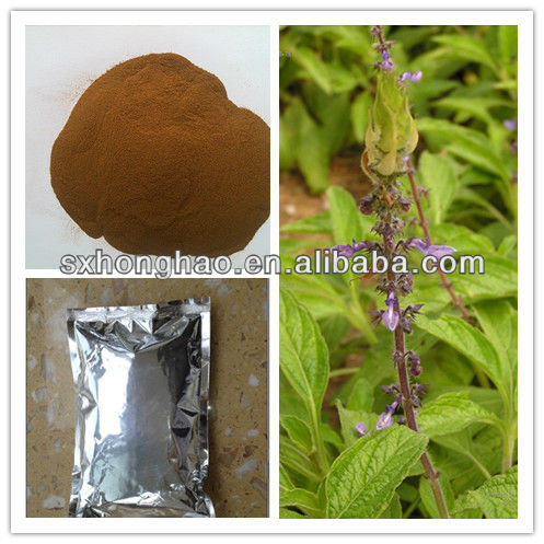 Good Quality Weight-loss Product 20% Forskohlin Coleus Forskohlii Extract