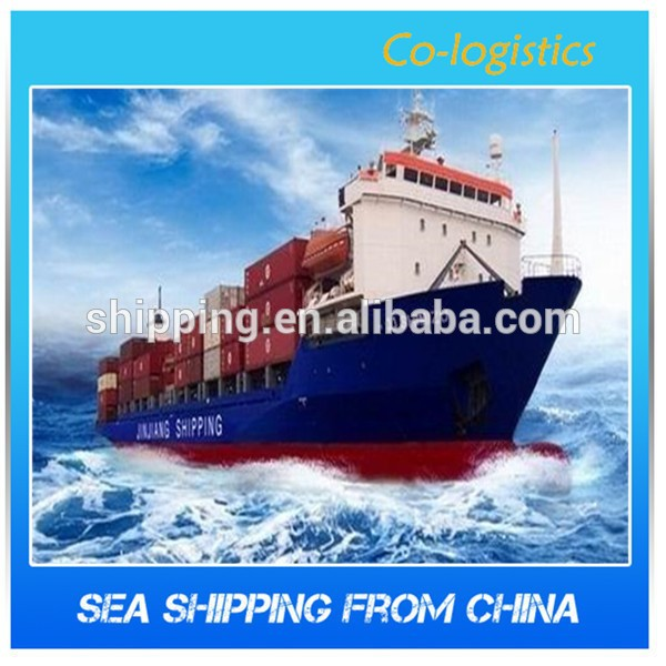 Consolidated agent Shanghai&Ningbo sea freight forwarder to Japan -----Skype: colsales02