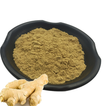 Natural plant ginger extract in bulk