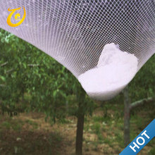 Agricultural HDPE Anti Hail Guard Protection Mesh Net For Trees