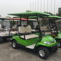 2 Passengers electric mini utility golf car price (LT-A627.2)