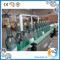 Alcoholic Beverages Glass Bottle Filling Glass