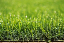 Artificial Turf for Home Landscaping Garden