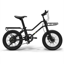 Chinese Factory Customized 7 Speed Cheap 20 Inch Bicycle Electric Bike with Hub Motor