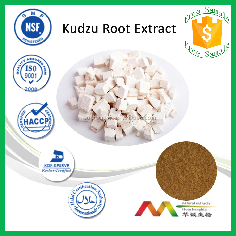 NSF-cGMP Professional Manufacturer Natural Puerarin Kudzu Root Extract