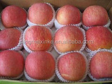 Sweet Fresh red Chinese fuji apples
