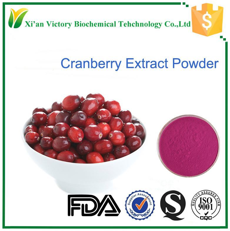cranberry extracts concentrate juice powder drink material
