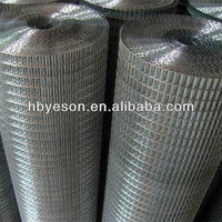 galvanized iron and ss welded mesh wire mesh fence