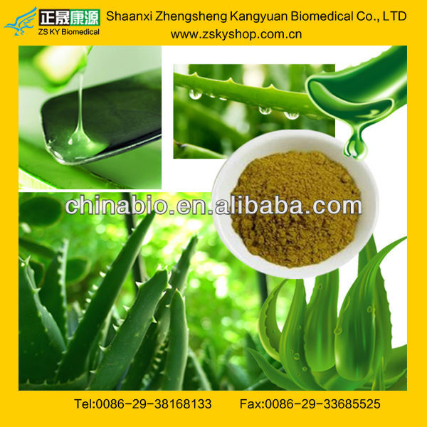 GMP Factory Supply Nature Aloe Vera Powder Extract