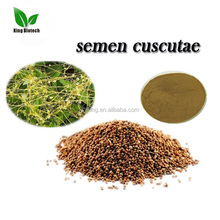 Free Sample Natural Dodder seed extract /Semen Cuscutae/Dodder seed P.E.