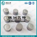 Customized tungsten carbide tips for oil filed wear parts application