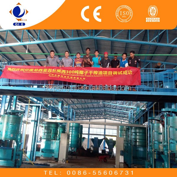 10-50TPD sunflower cold press oil machine