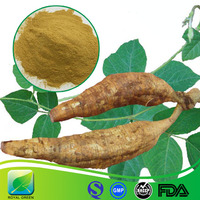Herb Product Kudzu Extract,Natural Product Puerarin and Pueraria Flavonoids,Pueraria lobata (Willd.)Ohwi Extract Powder