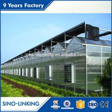 Industrial aluminum profile factory greenhouses tropical climate for flower