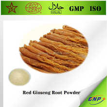 Natural High quality Korean Red Ginseng Root Extract with Ginsenosides