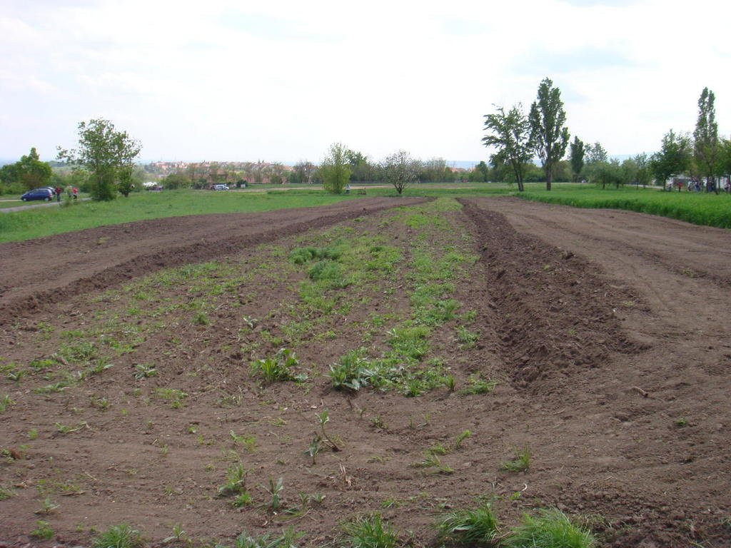 Agricultural land for lease/ Products/ Machinery