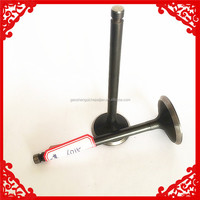motorcycle spare parts engine valve for Yiben YB 50QT-9 Popular