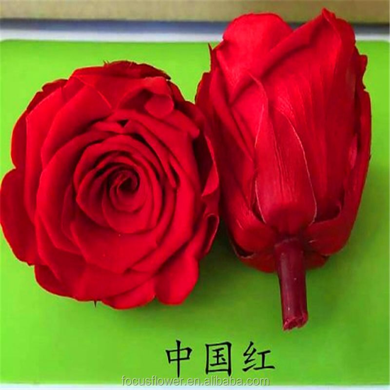 2017 Most Hot Selling Eternal Preserved Roses With High Quality