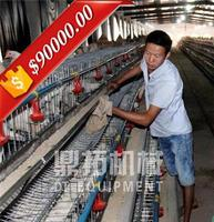 Trade Assurance A type 128 birds poultry feeding system for broiler price