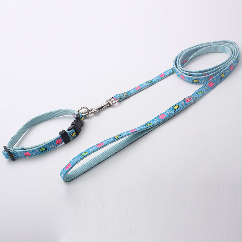 New arrival colorful nylon dog collar and leash in 2015