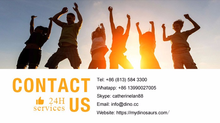 Contact MY DINO.jpg