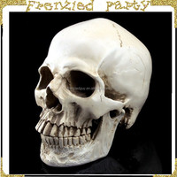 wholesale halloween plastic white skull FGHS-0002