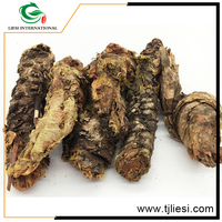 raw chinese herbs Radix /Herba rhodiola rosea tea/crude medical herbs hong jing tian
