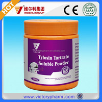Animal medicine tylosin tartrate soluble powder with GMP certificate