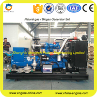 CE certification 1kw bio gas generator price with Cummins engine