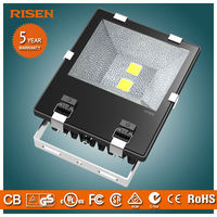 Risen Competitive price 100 watt Lumileds Led Flood Light