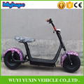 2016 hot selling 2 wheel halley fat wheel electric scooter 1000w 60V Citycoco Electric scooter with CE