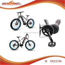 Electric bike motor mid drive 1000w fat e-bike electric bicyle