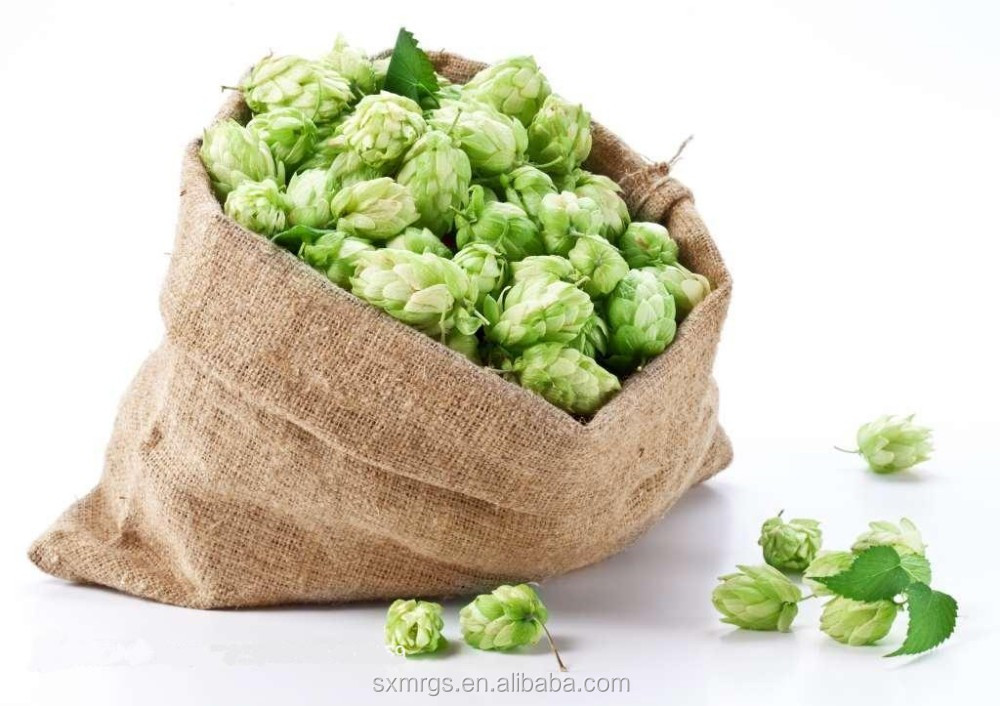 high quality beer hops extract for sale