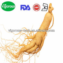 korean ginseng extract capsule/ginseng seeds for sale/Ginseng Extract