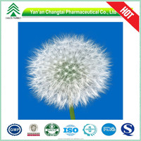 UV/HPLC GMP 100% natural Dried Dandelion root extract powder in bulk